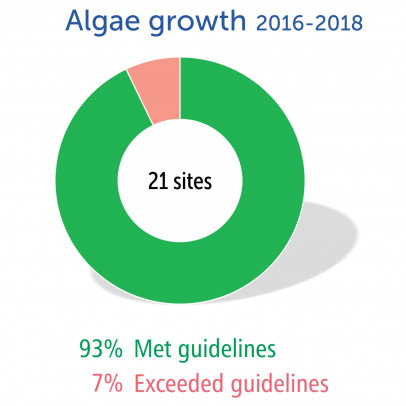 Algae growth 2016-2018